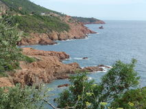 Esterel massif in provence Stock Image