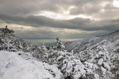 Esterel mountains under snow, france Royalty Free Stock Photos