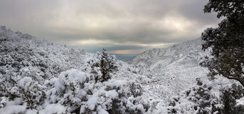 Esterel mountains under snow, france Stock Images