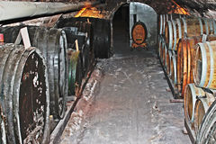 Esterhazy Österrike vinkällare Arkivbilder