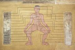 Esterno dell'arte murala che dimostra il punto importante di massaggio al monastero di Wat Pho a Bangkok, Tailandia Immagini Stock Libere da Diritti