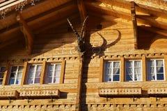 Case di campagna svizzere tradizionali immagine stock for Piani chalet svizzero