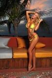 Esterno grazioso di posa di modello del bikini sexy immagini stock libere da diritti
