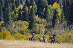 Estes Park et Rocky Mountains, le Colorado Images stock