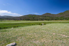 Estes park narodowy Zdjęcia Stock