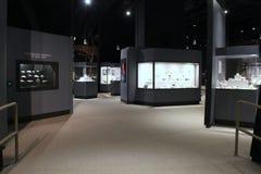 Estesa mostra delle gemme e dei minerali, il museo dello stato, Albany, New York, 2016 Immagini Stock Libere da Diritti