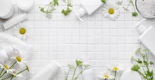 Estetiche organiche Fotografia Stock Libera da Diritti
