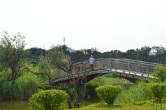Estetisk kinesträdgårdbro Arkivfoton