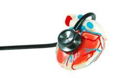 Estetoscópio em um coração imagem de stock
