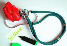 Estetoscopio verde con el corazón rojo Imagenes de archivo