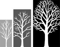Estágios do crescimento da árvore/eps Fotografia de Stock Royalty Free