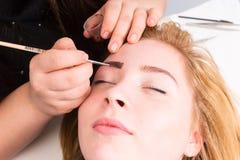 Esthetician Grooming Eyebrows do cliente fêmea imagens de stock royalty free
