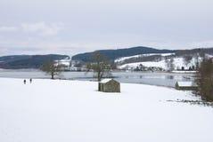 Esthwaite im Winter stockbild