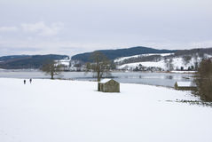 Esthwaite in Winter Stock Image