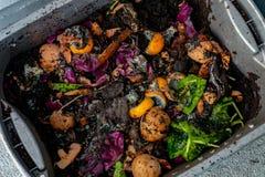Estiércol vegetal de la granja del gusano con la comida de la descomposición que mira abajo fotos de archivo