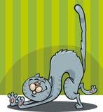 Esticando desenhos animados do gato Foto de Stock