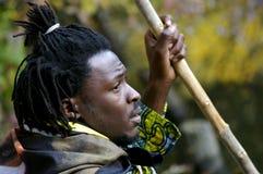 Estilo africano Imagens de Stock Royalty Free