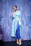 Estilo atractivo de la moda del partido del negocio de colección del traje de vestido de la mujer Imágenes de archivo libres de regalías