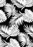 Estilo blanco y negro del modelo de las hojas tropicales, línea plana vector y ejemplo en fondo negro imágenes de archivo libres de regalías