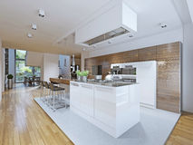 Estilo brilhante da vanguarda da cozinha Fotos de Stock