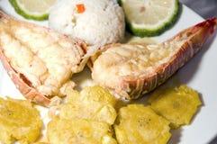 Estilo centroamericano de la langosta con arroz de los tostones Fotografía de archivo