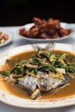 Estilo chino tratado con vapor de los pescados Imagen de archivo libre de regalías