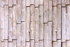 Estilo concreto del bambú de la textura Foto de archivo libre de regalías