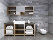 Estilo contemporâneo do banheiro Imagens de Stock Royalty Free