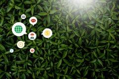 Estilo creativo hecho de flores y de hojas con las notas que mienten completamente fotografía de archivo libre de regalías