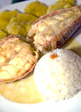 Estilo da América Central da lagosta com arroz dos tostones Foto de Stock