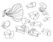 Estilo da garatuja, peixe de combate Siamese Fotografia de Stock