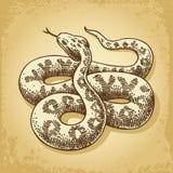 Vetor da ilustração da serpente à terra Fotografia de Stock