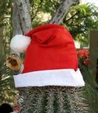 ¡Estilo de Arizona de la Navidad! Imagenes de archivo