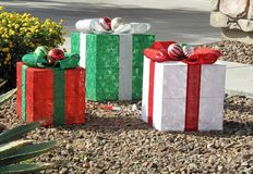 ¡Estilo de Arizona de la Navidad! fotos de archivo libres de regalías