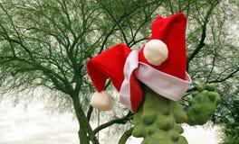 ¡Estilo de Arizona de la Navidad! Foto de archivo