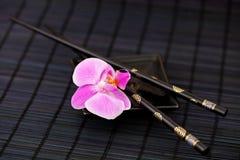 Estilo de Asia de la orquídea Imagen de archivo