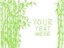 Estilo de bambú Imagen de archivo libre de regalías