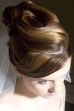 Estilo de cabelo Imagens de Stock Royalty Free