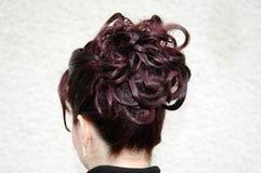 Estilo de cabelo Imagem de Stock