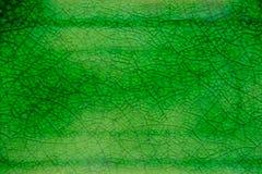 Estilo de cerámica del vintage del fondo de la textura del Celadon del verde del primer imagen de archivo libre de regalías