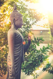 Estilo de la imagen del vintage, la estatua derecha de Buda del jardín del templo Fotografía de archivo libre de regalías