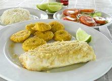 Estilo de Nicaragua del arroz del kabob del shish de la carne de vaca Fotografía de archivo