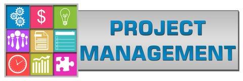 Estilo del botón de la gestión del proyecto Imagen de archivo libre de regalías
