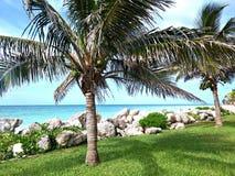 Estilo del Caribe Foto de archivo