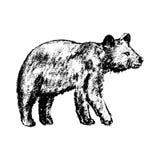 Estilo del grunge del icono del oso Foto de archivo libre de regalías