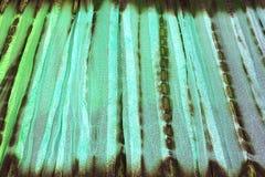 Estilo del vintage del modelo de la tela de la tapicería Fotos de archivo libres de regalías