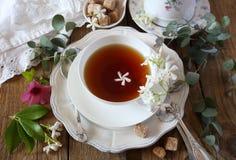 Estilo del vintage: té romántico que bebe con té del jazmín Fotografía de archivo libre de regalías