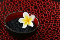 Estilo do Asian das lentilhas Imagens de Stock