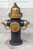 Estilo do vintage da boca de incêndio de fogo no newyork Fotos de Stock