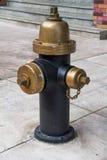 Estilo do vintage da boca de incêndio de fogo no newyork Imagem de Stock Royalty Free